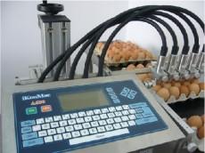 伊春鸡蛋喷码机 日期喷码机 生产日期喷码机