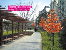 订购LED枫叶树 发光树 枫叶景观树 亮化树