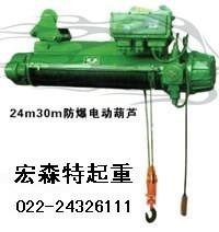 防爆电动葫芦 国产防爆电动葫芦