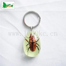 昆蟲琥珀鑰匙扣產品透明高 美觀大方