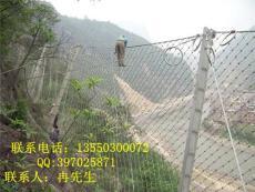 泥石流灾害终结者越琪主动防护网被动防护网