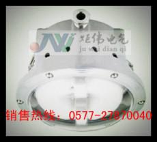 GC102免维护节能无极灯 GC102-40W