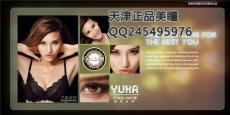 YUKA Crazy Sandy疯狂仙蒂 直径19.8