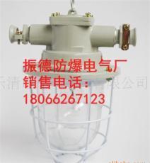 供应DGS-60/127V矿用隔爆型白炽灯