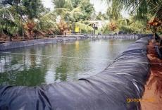 人工湖鱼池泥鳅水库出险加固专用防渗膜----