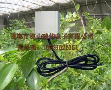 RHD-17室内空气温湿度传感器