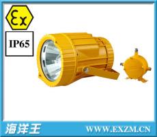 DGS70/127B A 礦用隔爆型投光燈