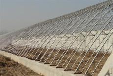 育苗温室大棚 草莓种植大棚